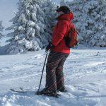 ski micky poeder boom