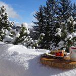 uitzicht ontbijtplank buiten